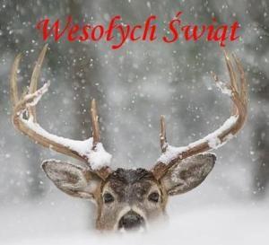 Wesołych-Świąt-300x273